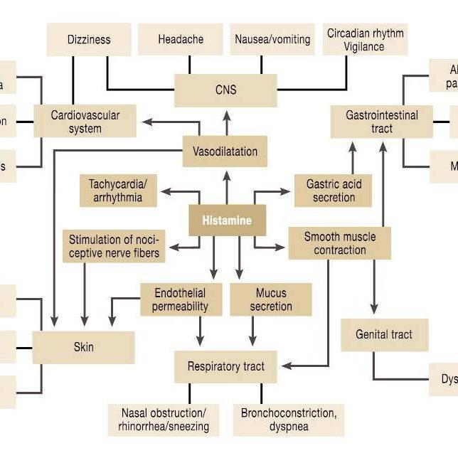 Histamine_Related_Symptoms_by_Maintz_L_et_al